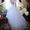 Продам Обалденное Свадебное платье  #1199393